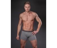Мъжки боксерки с по - дълъг крачол N251MJ сив